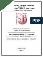 GUIA DE PROYECTO DE TESIS.docx