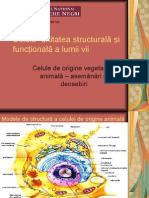structura celulei