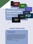 Landsat 7 Natural Colors