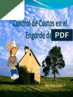 Control de costos en el engorde de Pavos. Ing. Cuenca.pdf