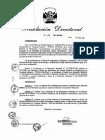 RD_174_2011 - Aprueba Normas de Control Interno
