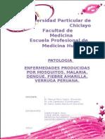 seminario-pato.docx