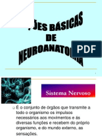 Introducao a Neuroanatomia