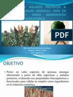presentacion_ana_pastor_revoredo_de__abram.pdf