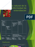 Historia Natural de La Enfermedad de Enterobacter