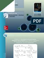 MICRONUTRIENTES. Vitaminas y Minerales