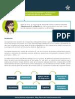 Procesos de Aprovisionamiento, Producción y Distribucion Dentro de La Empresa
