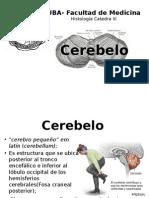 Trabajo Histología Cerebelo