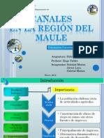 Canales de La Region Del Maule