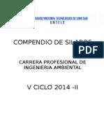 V Ciclo Ingeniería Ambiental