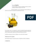 Clasificación de Los NutrientesLípidos