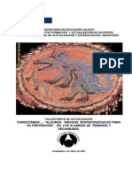 Prevencion Riesgos Biopsicosociales - Copia