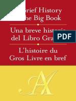 Una Breve Historia Del Libro Grande