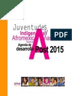 Informe Sombra JIAAgendaPost 2015