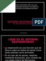 9 SISTEMA RESPIRATORIO I.ppt