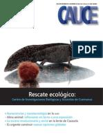 RevistaCauce8-10-12