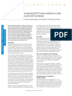 Detection of Micro Injected GST Fusion Proteins in Cells Using a Polyclonal Anti-GST Antibody (From Life Science News, Issue 2)