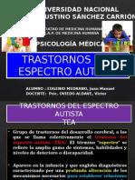 Trastorno Del Espectro Autista Resumen