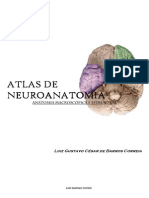 Atlas de Neuroanatomia