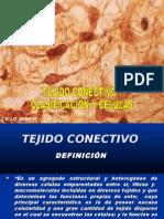 TEJIDO CONECTIVO I  CÉLULAS Y CLASIFICACION
