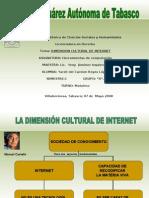 DIMENSIÓN CULTURAL DE INTERNET