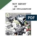 Automobile Utilization Management