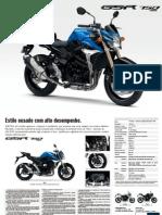 Leaflet GSR750 P