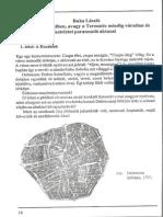 Buka László - Debrecen - Város hét tételben