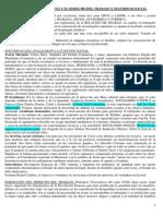 Resumen Derecho Laboral UES21