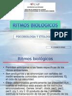 1 Sistemas y Ritmos Biologicos Copia