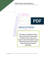 maxilofacial.docx