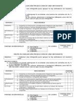 Pauta de Evaluación Infografia