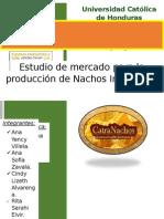 Estudio de Mercado-- Proyecto Nachos - Rev 21 Junio