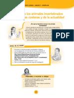 Documentos Primaria Sesiones Unidad05 CuartoGrado Integrados 4G-U5-Sesion08