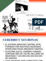 Neuro Bilo Gia