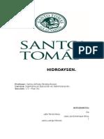 HIDROAYSEN trabajo de Micro.doc