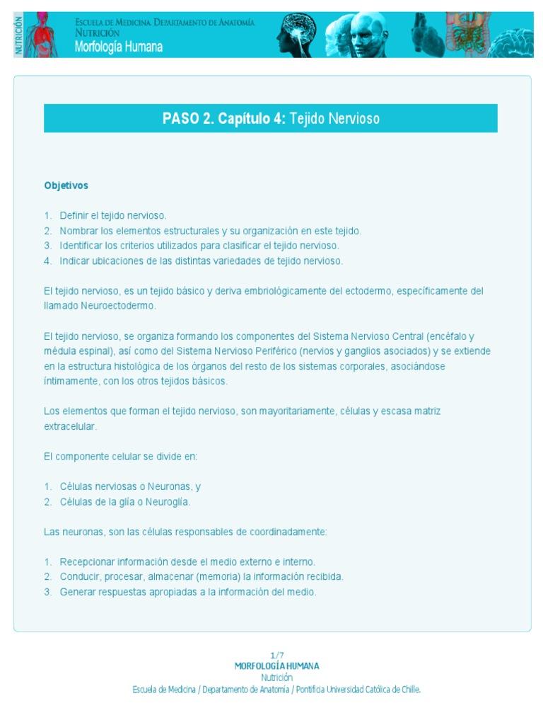 Micro p2cap4