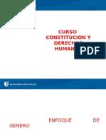 constitución de derechos humanos