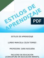 Diapositivas Estilos de Aprendizaje