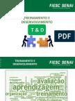 TREINAMENTO E DESENVOLVIMENTO 16 11 15.pdf