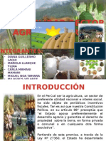 Sector Agroindustrial 1