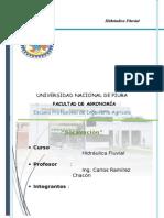 SOCAVACION (Autoguardado)