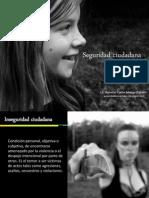 seguridadciudadanaimagenes.pdf