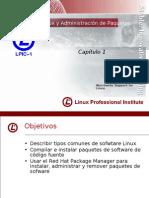 LPI - 101 cap1