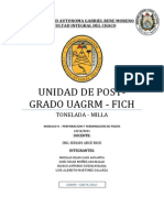 INFORME-TONELADA.pdf