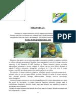 2.ATI.doc