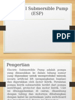 PPT ESP
