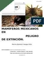 Mamíferos Mexicanos en Peligro de Extincion