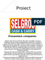 Selgros Proiect Alina 2