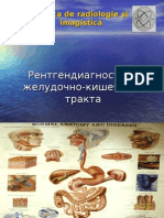 Lectie_Tubul_si_HBP_RUS.ppt
